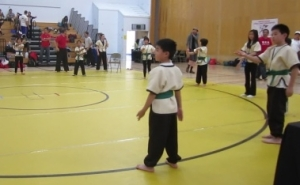 kids shuaijiao picture 2